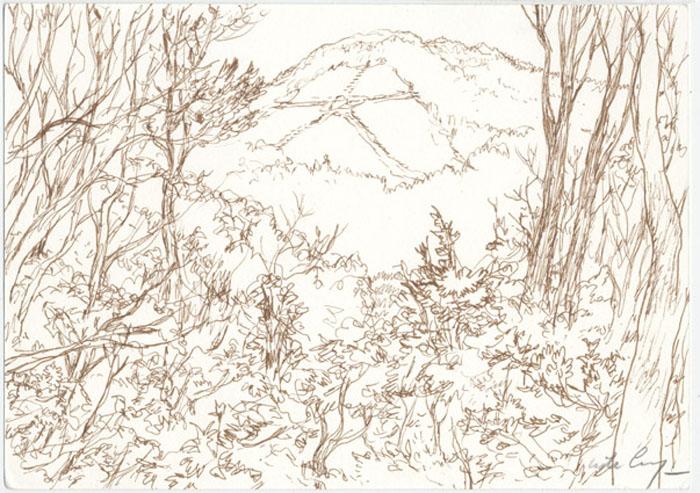 Le Kanji du Daimon-ji - 2008 pastel, crayon de couleur - 21 x 14,8 cm Ref. : crecy063