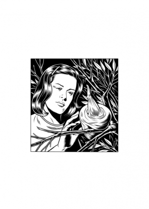 Charles Burns - Nest Girl, sérigraphie 100 exemplaires - 48 x 68 cm 100 €